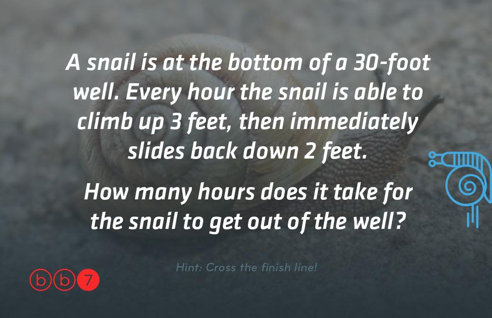 bb7_MMB_snail